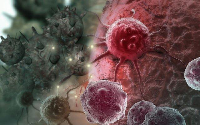 Cancer cell implant.jpg