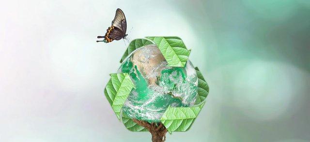 Biosegradable