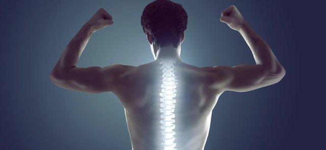 Spine Invibio