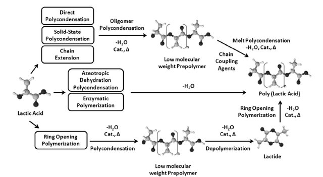 Polymerisation of lactic acid