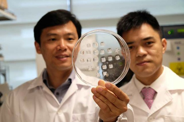 NR-Banner---Prof-Chen-Peng-(left)-holding-the-drug-laden-microneedle-fat-burning-patch-with-Asst-Prof-Xu-Chenjie---Copy-1.jpg