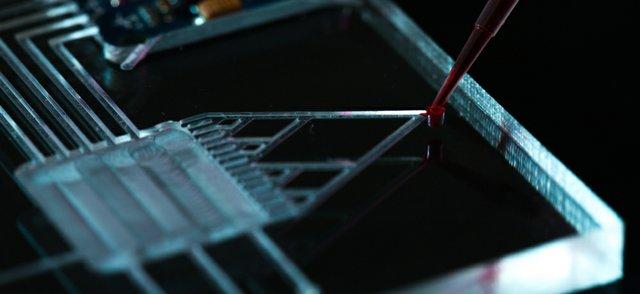 Lab on chip