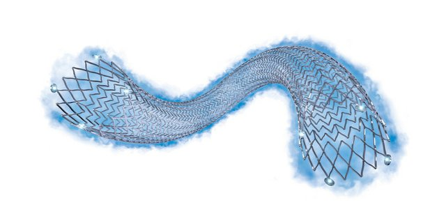 The Eluvia Drug-Eluting Vascular Stent