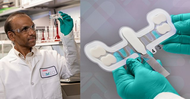 Investments aim to strengthen DuPont's Liveo healthcare silicone solutions